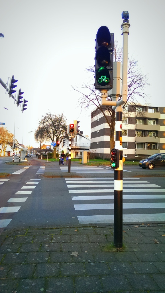 Bicycle lanes had their very own traffic lights
