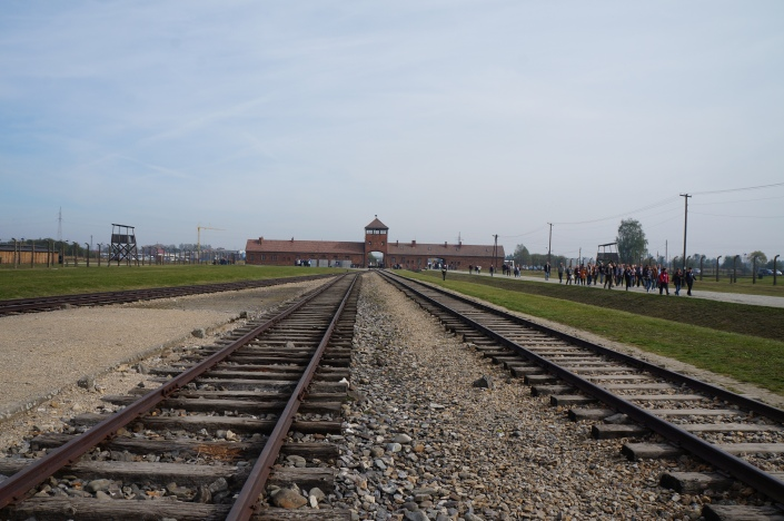 Prisoners were brought into the camp by rail.